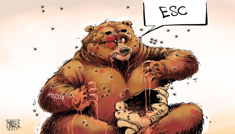 مصيدة العسل و الدب الروسي