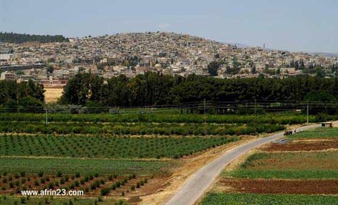 غصن الزيتون : الجيش الحر يسيطر على قرى جديدة غرب عفرين