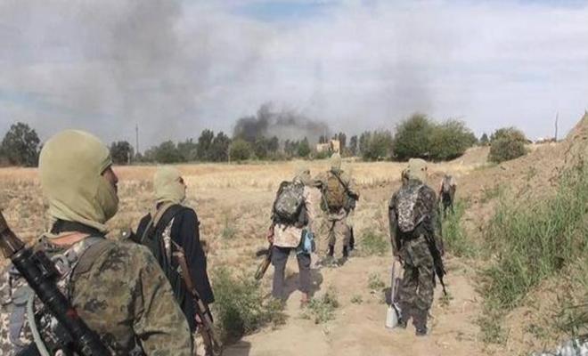 هجوم مباغت لتنظيم داعش على مواقع لميليشيا قسد شمال الرقة