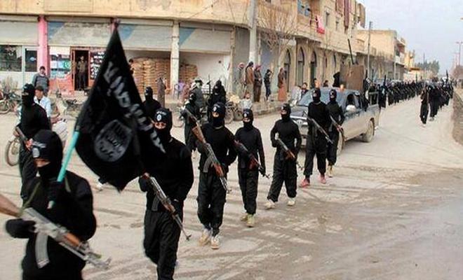 تقرير للأمم المتحدة تبين فيه عدد مقاتلي داعش في العراق وسوريا