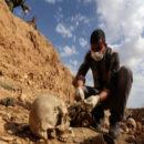 فريق الإستجابة الأولية ينتشل ما يزيد عن 2600 جثة من مقابر جماعية في الرقة