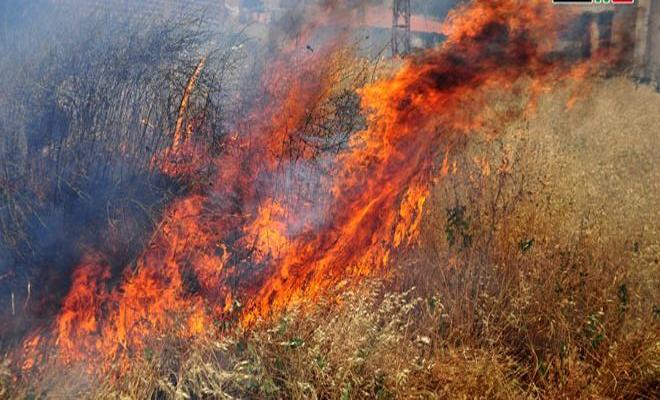 قصف مدفعي لعصابات الأسد الإرهابية يحرق اراضي زراعية في بلدة حيّان