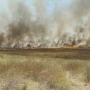"""مظاهرة تتهمميليشيا """"ب ي د"""" بحرق الأراضي الزراعية شمال الحسكة والأخير يرد"""